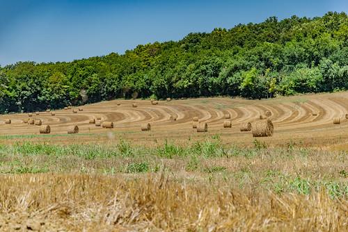 06-Géométrie agricole