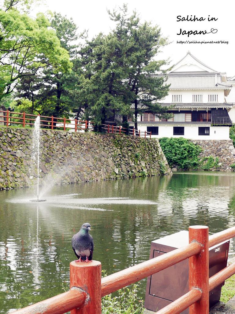 日本自由行福岡小倉城 (11)