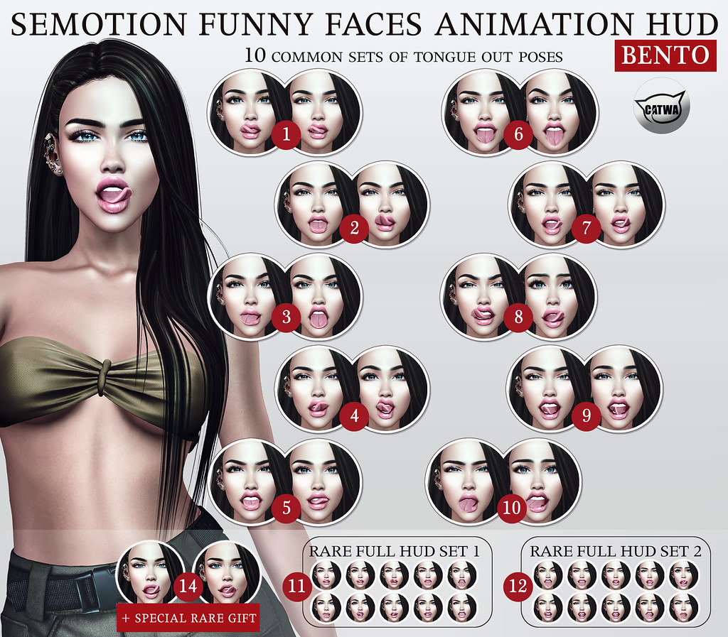 SEmotion Funny Faces Facial HUD