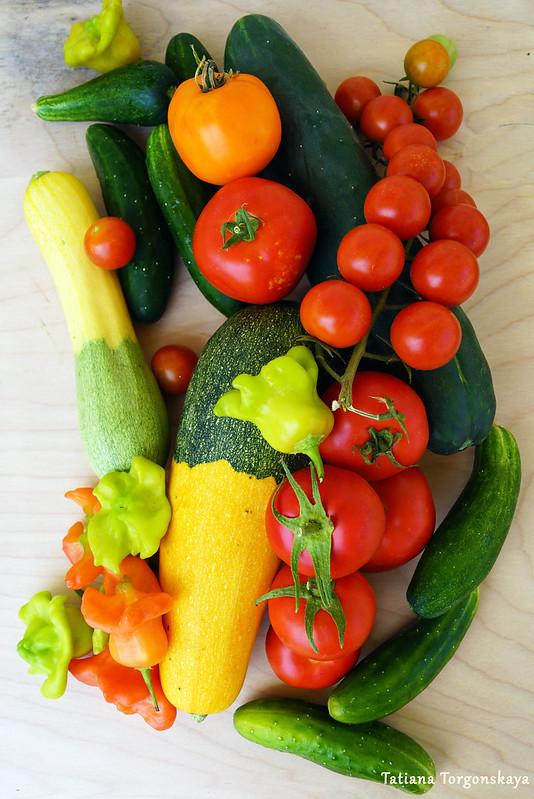 Свежие овощи: кабачки, огурцы, перцы, томаты