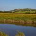 River Arun Sussex