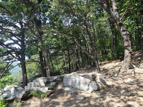Bear's Den Overlook 1