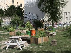 Karma-Kultur community garden July 2018