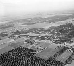Garden Grove, 1949