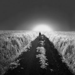 El final del camino. / The end of the road.