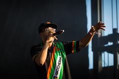 Digable Planets en Riot Fest de Chicago 2018