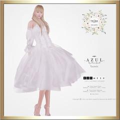 (AD) -AZUL- Yazmin [TrunkShow]