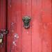 <p><a href=&quot;http://www.flickr.com/people/153364439@N04/&quot;>Weber 71</a> posted a photo:</p>&#xA;&#xA;<p><a href=&quot;http://www.flickr.com/photos/153364439@N04/44173689471/&quot; title=&quot;DSC_7216&quot;><img src=&quot;http://farm2.staticflickr.com/1855/44173689471_e181e4b2c8_m.jpg&quot; width=&quot;159&quot; height=&quot;240&quot; alt=&quot;DSC_7216&quot; /></a></p>&#xA;&#xA;