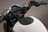 Harley-Davidson 1870 SOFTAIL FXDR 114 2019 - 15