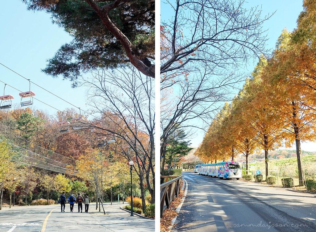 elephant_train_seoul_grand_park