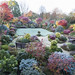 Autumn colours after frost by Four Seasons Garden