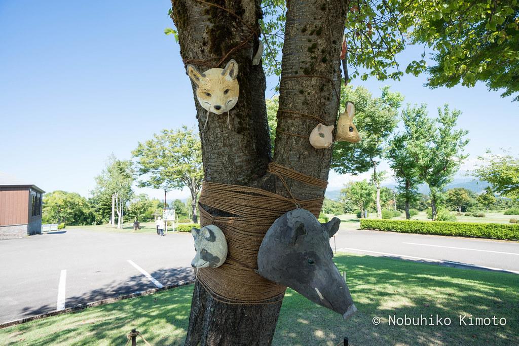 どうぶつの木
