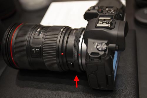 Canon EOS R_11