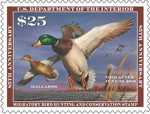 2018-2019 Federal Duck Stamp