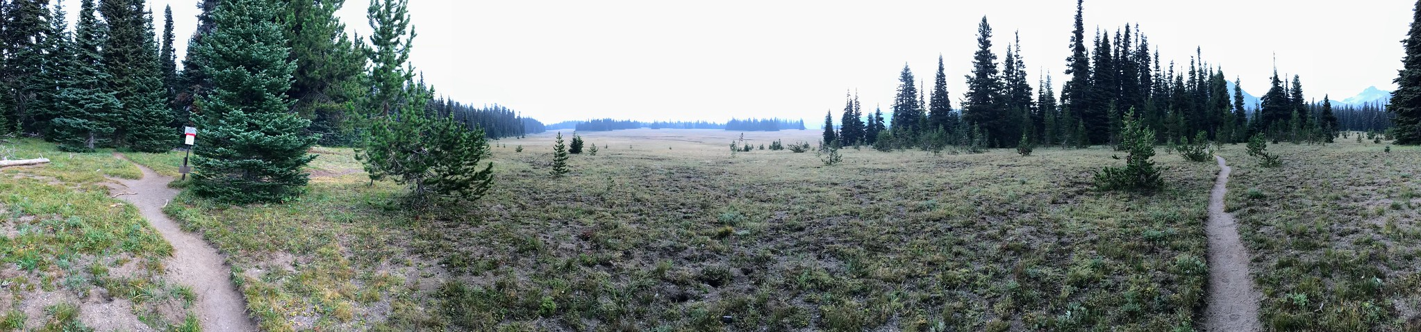 Stunning meadow between Fire Creek Camp and Berkely Camp