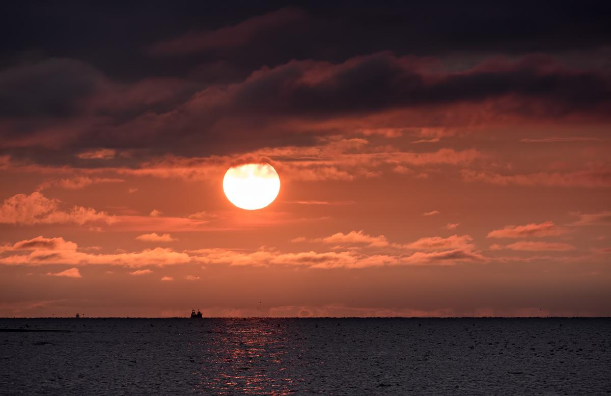 Soleil et sa moumoutte 43812597924_90d98fc636_o