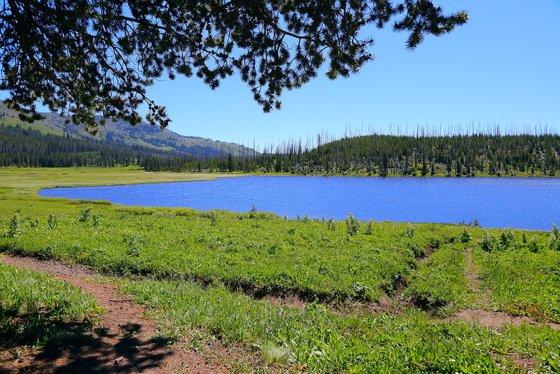 IMG_6940 Cascade Lake, Yellowstone National Park