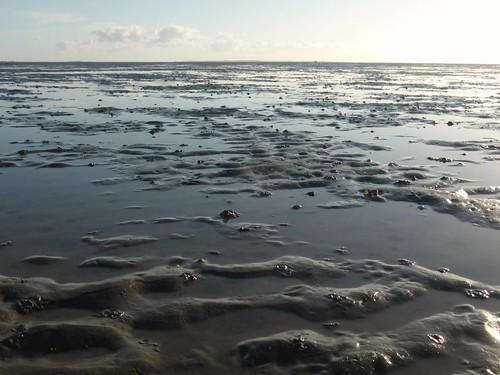 Serenity at low tide, Boschplaat Terschelling