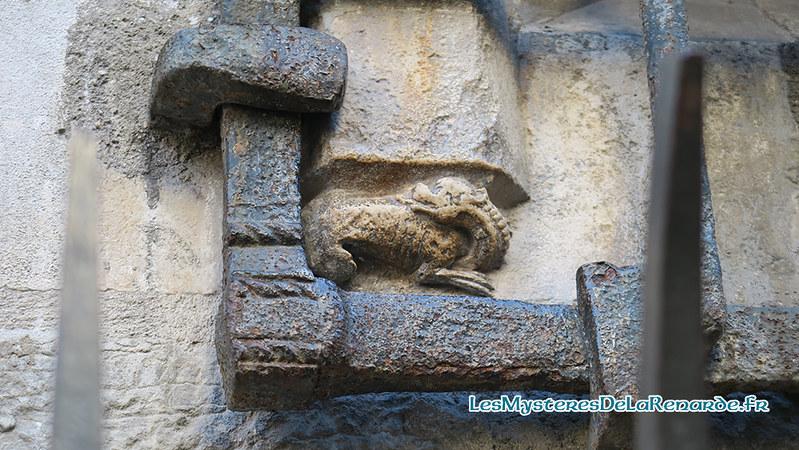Salamandre de Dijon