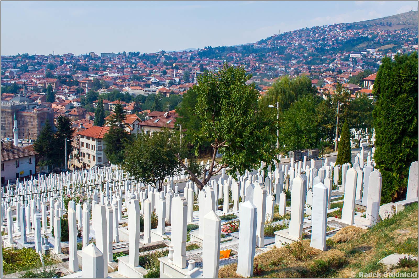 Widok z cmentarza na miasto