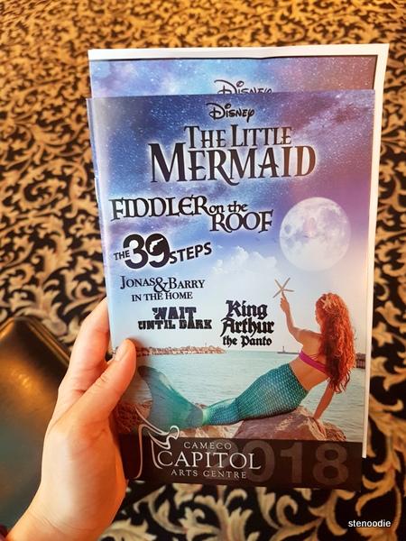 The Little Mermaid program