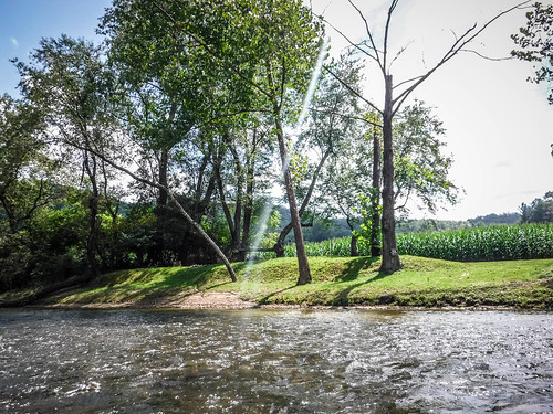 French Broad River - Rosman to Island Ford-189
