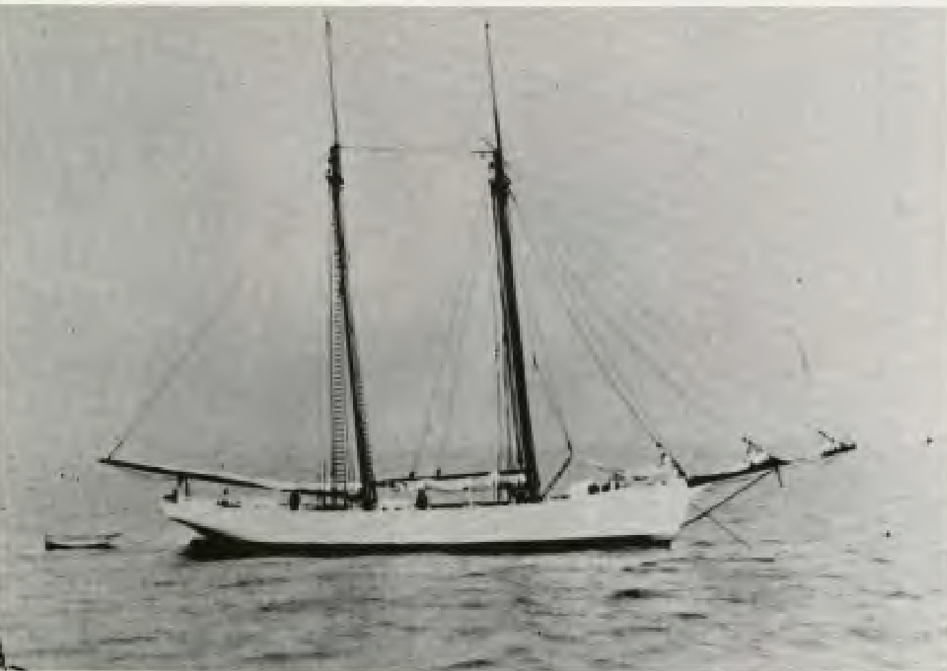 The Adventist schooner Pitcairn before being upgraded, 1890. The berths, galley, and cabin were all below deck.