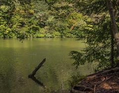 2018.09.08_Ocoee River