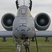 USAF Michigan ANG_Fairchild Republic A-10 Thunderbolt II_0250