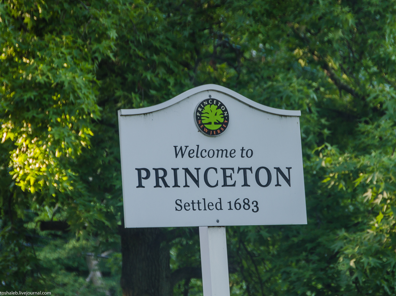Принстон-1