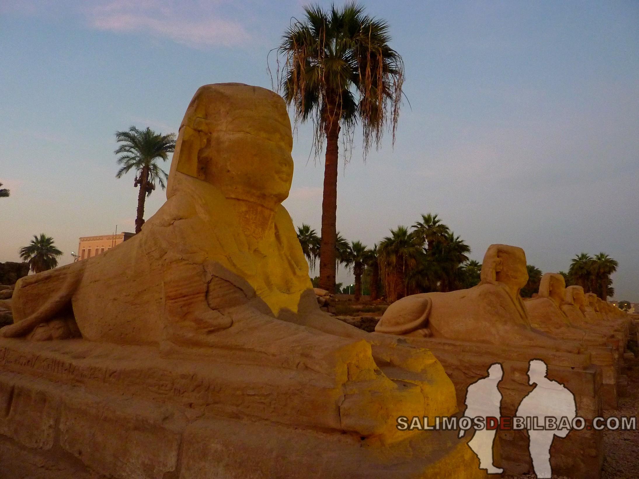 0744. Templo de Luxor