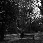 Sitting in the park - https://www.flickr.com/people/144688381@N04/