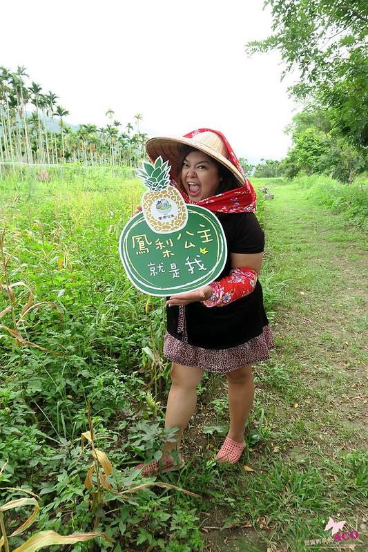 鹿野 旅遊IMG_2497.JPG