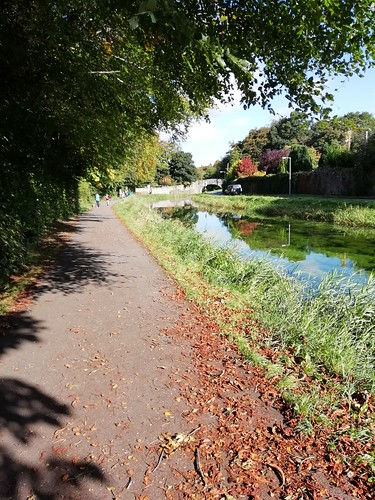 Autumn stroll on the canal at Naas Co. Kildare.