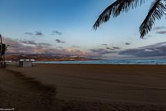 Early Morning Walk along the Las Palmas Groomed Beaches .