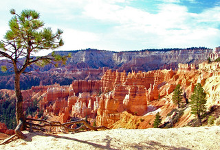 On the Edge, Bryce Canyon NP, UT 09