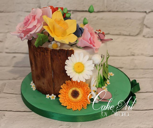 Cake from Cake Art by Silvana