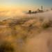 San Francisco Morning Fog by davidyuweb