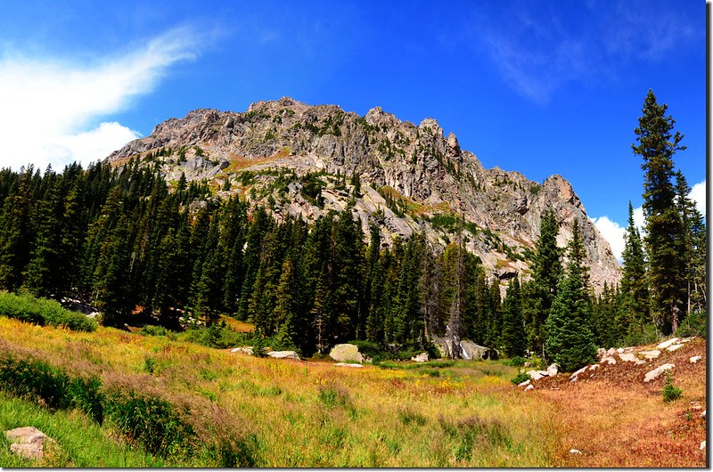 Willow Lakes Trail (24)