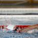 Giochi del Tricolore 2018_Nuoto