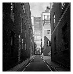 FILM - Brown Lane