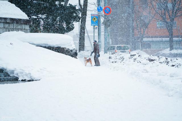 她說旅途若是卷底片|北國之冬 | 15