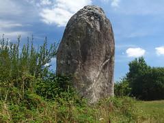 Le menhir dit « La Pierre Longue » près de Pluherlin - Morbihan - Août 2018 - 10