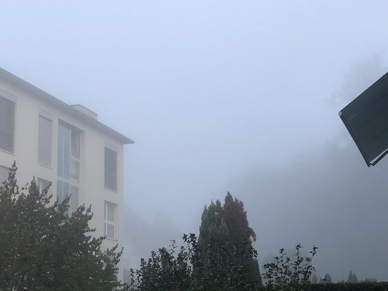 Morning Mist Autumn