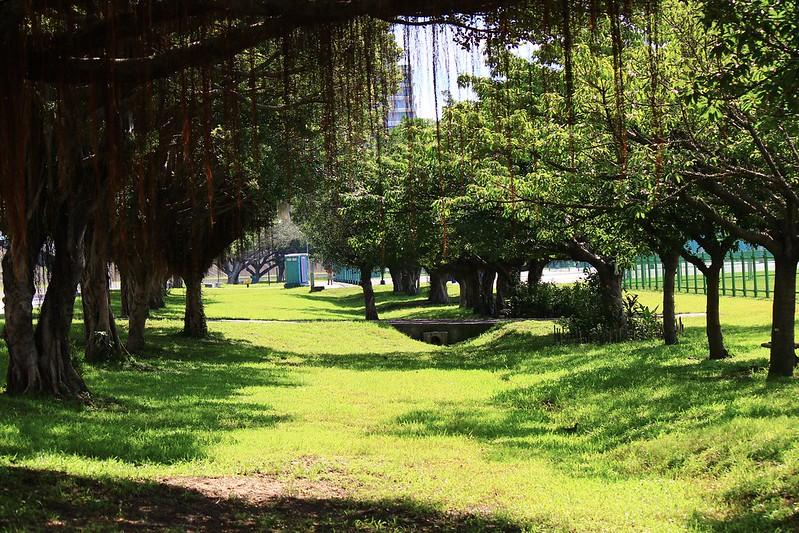 台北市中正河濱公園