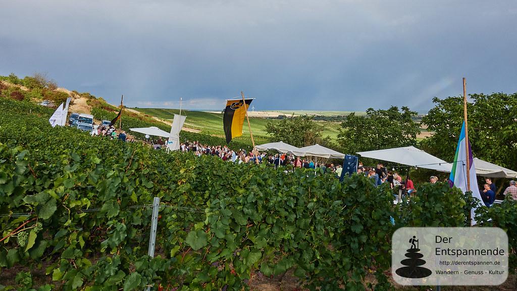 Weinprobe in den Weinbergen