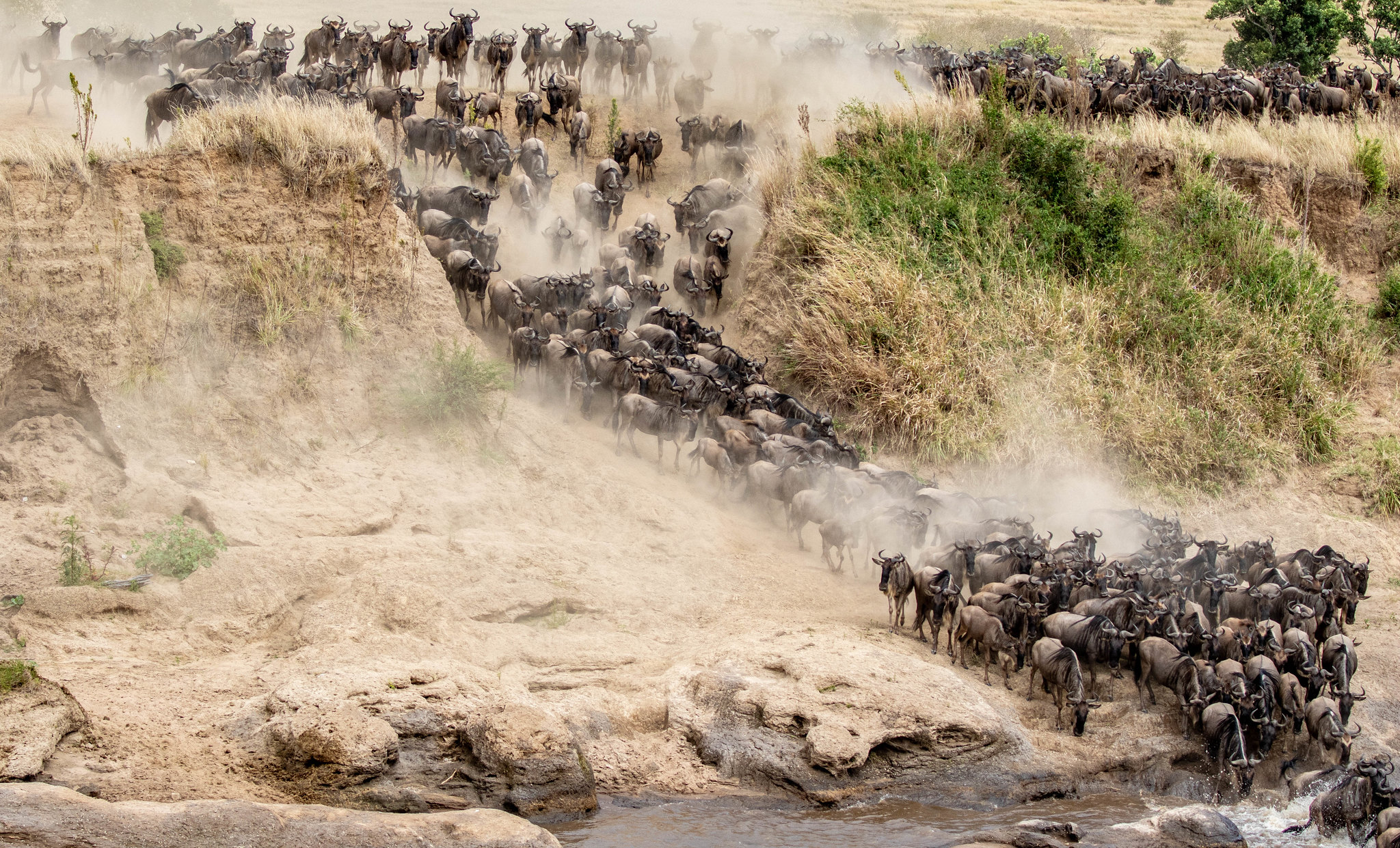 Crossing the Talek at Entim Camp, Maasai Mara