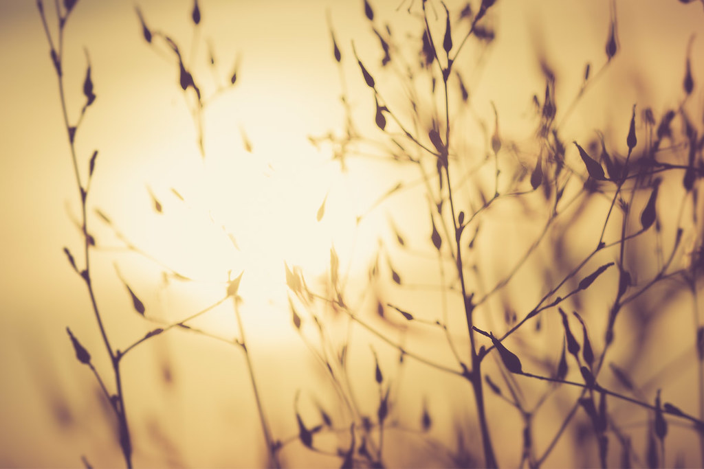 Puesta de sol_Atardecer_MarioPellitero