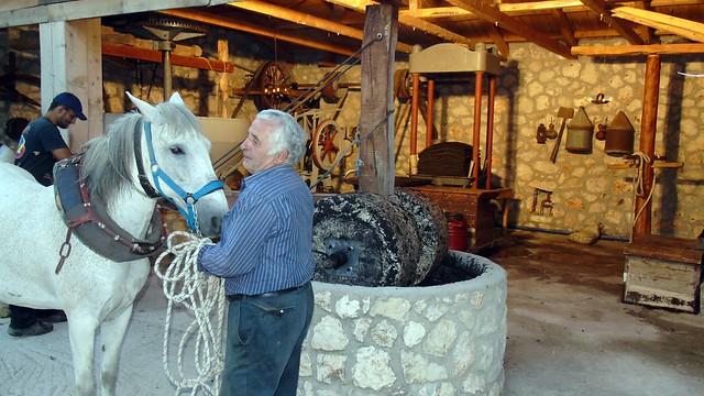 Παραδοσιακό ελαιοτριβείο στην Λευκάδα