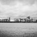Leith Docks 2